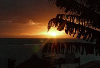 Sun rise in porto de galinhas